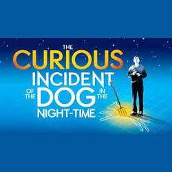 downtown new braunfels circle arts theatre the curious incident of the dog in the night time